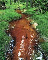 cerveny potok