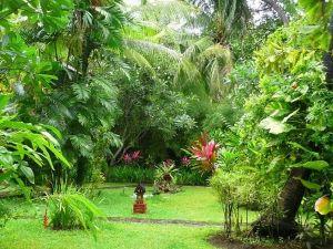 tropicka zahrada